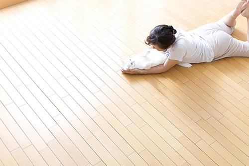 床暖房(ガス温水式)